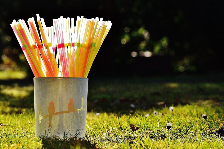 Waarom papieren rietjes een must zijn voor elke tuin
